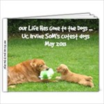 Dogs - 7x5 Photo Book (20 pages)