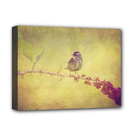 Palm Warbler Deluxe Canvas 16  X 12  (stretched)  by heathergreen