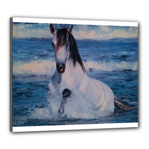 Horse Canvas 24  x 20  (Stretched) by ILPADRINO810