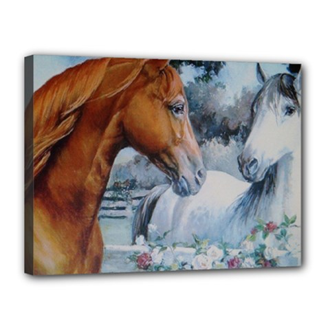 Horses Canvas 16  x 12  (Stretched) by ILPADRINO810