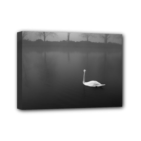Swan 5  X 7  Framed Canvas Print by artposters