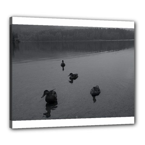 Ducks 20  X 24  Framed Canvas Print by artposters
