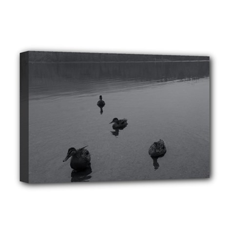 Ducks Deluxe Canvas 18  X 12  (stretched) by artposters