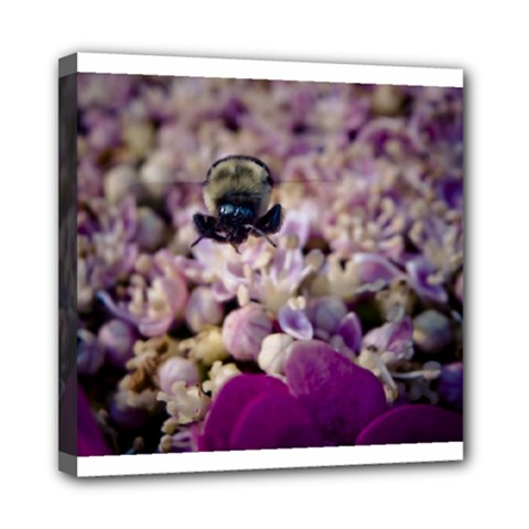 Flying Bumble Bee 8  x 8  Framed Canvas Print