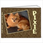 pixie - 7x5 Photo Book (20 pages)