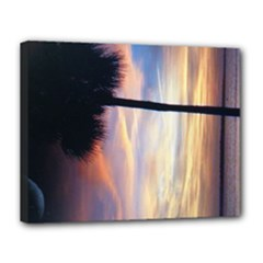 11x14 canvas Palmetto tree - Canvas 14  x 11  (Stretched)