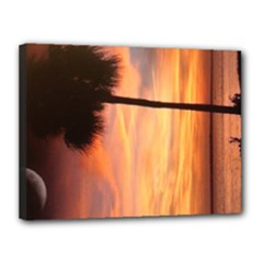 12x16 Palmetto Tree Canvas - Canvas 16  x 12  (Stretched)