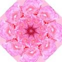 Delicate Pink Bridesmaids Umbrella (Medium) View1