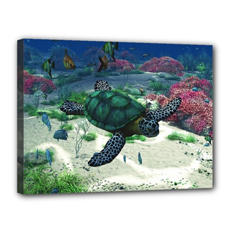 Sea Turtle Canvas 16  x 12  (Stretched) by gatterwe