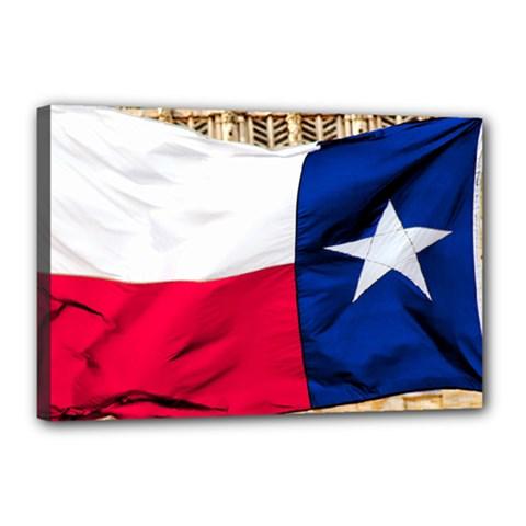 Texas Canvas 18  X 12  (framed)