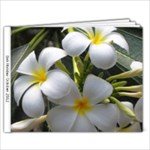 Bali 2012 - 9x7 Photo Book (20 pages)