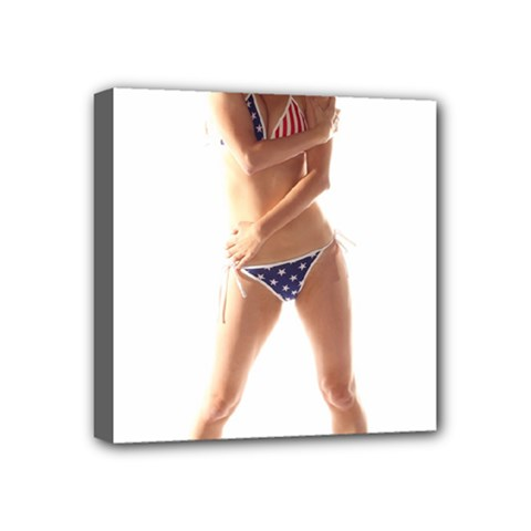 Usa Girl Mini Canvas 4  X 4  (framed) by hlehnerer