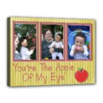 apple canvas - Canvas 16  x 12  (Stretched)