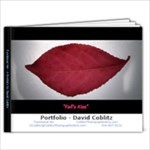 David Coblitz Portfolio - Functional Art - 9x7 Photo Book (20 pages)