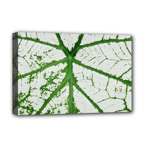 Leaf Patterns Deluxe Canvas 18  X 12  (framed) by natureinmalaysia