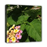 Lantana Lizard - Mini Canvas 8  x 8  (Stretched)