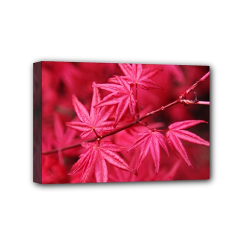 Red Autumn Mini Canvas 6  X 4  (framed) by ADIStyle