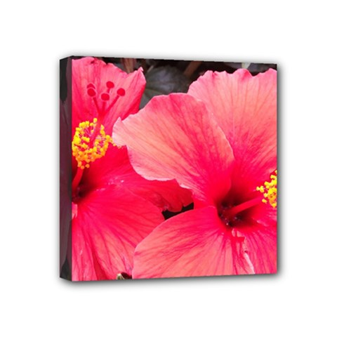 Red Hibiscus Mini Canvas 4  X 4  (framed) by ADIStyle