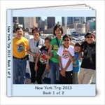 New York 2013 - 8x8 Photo Book (20 pages)