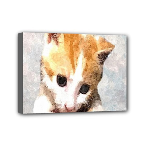 Sweet Face :) Mini Canvas 7  X 5  (framed) by mysticalimages