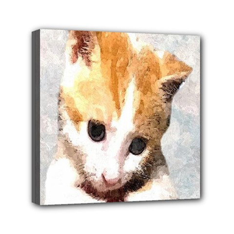 Sweet Face ;) Mini Canvas 6  X 6  (framed) by mysticalimages