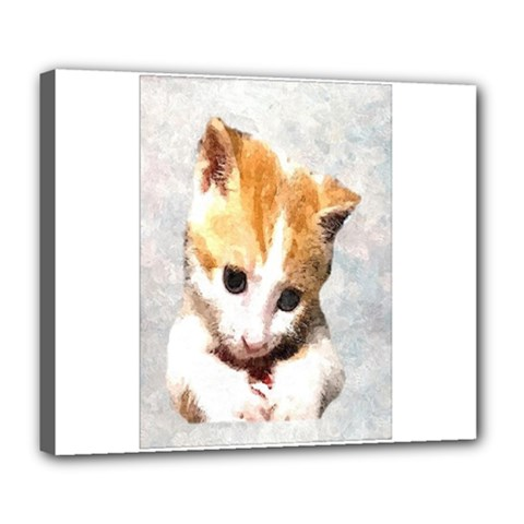 Sweet Face ;) Deluxe Canvas 24  X 20  (framed) by mysticalimages
