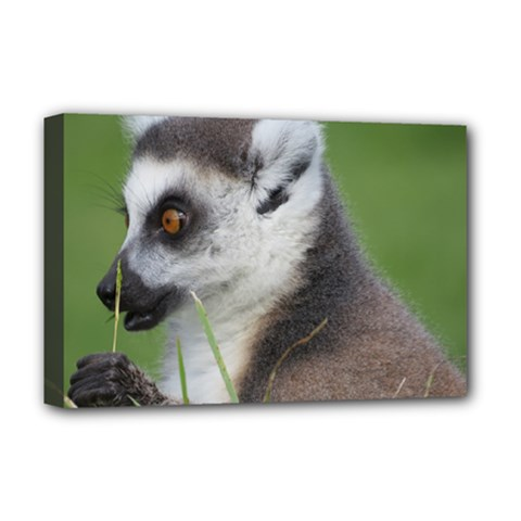 Ring Tailed Lemur  2 Deluxe Canvas 18  X 12  (framed) by smokeart