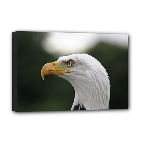 Bald Eagle (1) Deluxe Canvas 18  X 12  (framed) by smokeart