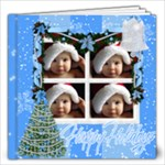 Merry Chirstmas - 12x12 Photo Book (20 pages)