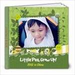 pea2012 - 8x8 Photo Book (20 pages)