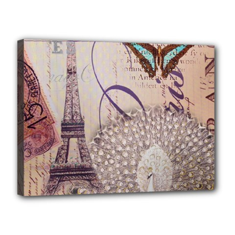 White Peacock Paris Eiffel Tower Vintage Bird Butterfly French Botanical Art Canvas 16  X 12  (framed) by chicelegantboutique