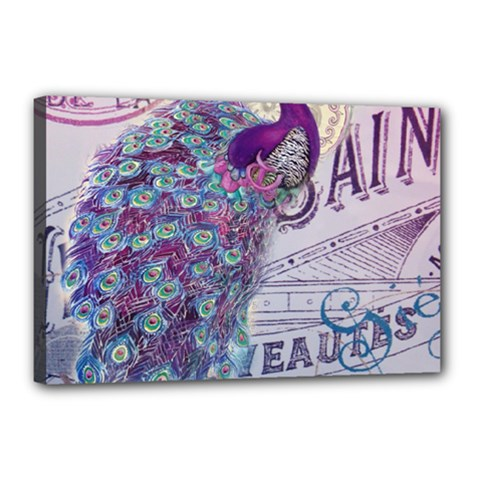 French Scripts  Purple Peacock Floral Paris Decor Canvas 18  X 12  (framed) by chicelegantboutique