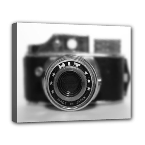 Hit Camera (2) Deluxe Canvas 20  X 16  (framed)