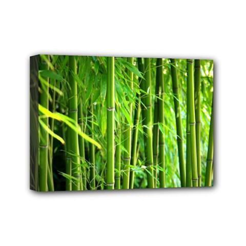 Bamboo Mini Canvas 7  X 5  (framed)