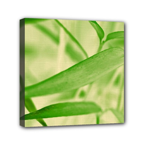 Bamboo Mini Canvas 6  X 6  (framed) by Siebenhuehner