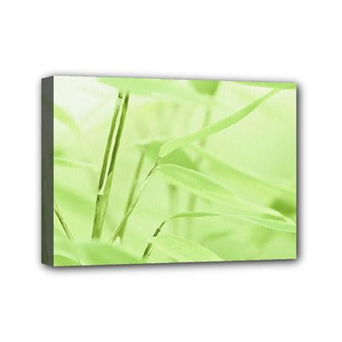 Bamboo Mini Canvas 7  X 5  (framed) by Siebenhuehner