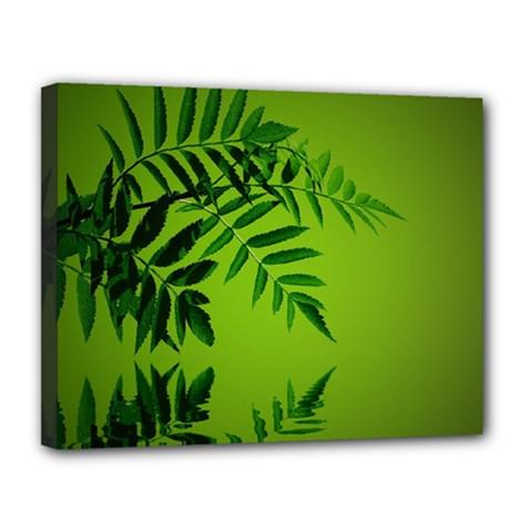 Leaf Canvas 14  X 11  (framed) by Siebenhuehner
