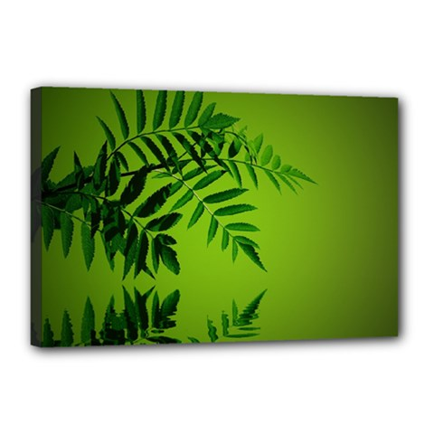 Leaf Canvas 18  X 12  (framed) by Siebenhuehner