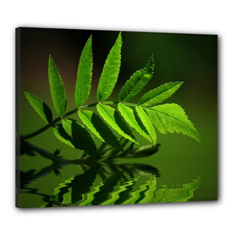 Leaf Canvas 24  X 20  (framed) by Siebenhuehner