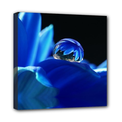 Waterdrop Mini Canvas 8  X 8  (framed)