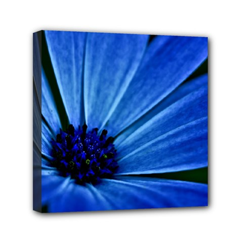Flower Mini Canvas 6  X 6  (framed) by Siebenhuehner