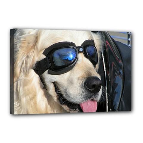 Cool Dog  Canvas 18  X 12  (framed) by Siebenhuehner