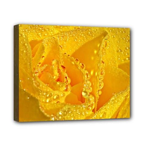 Waterdrops Canvas 10  X 8  (framed) by Siebenhuehner