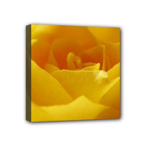 Yellow Rose Mini Canvas 4  X 4  (framed) by Siebenhuehner
