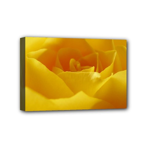 Yellow Rose Mini Canvas 6  X 4  (framed) by Siebenhuehner