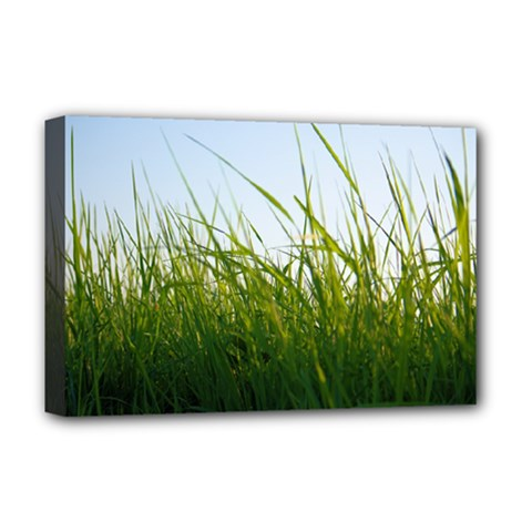 Grass Deluxe Canvas 18  X 12  (framed) by Siebenhuehner