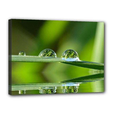 Waterdrops Canvas 16  X 12  (framed) by Siebenhuehner
