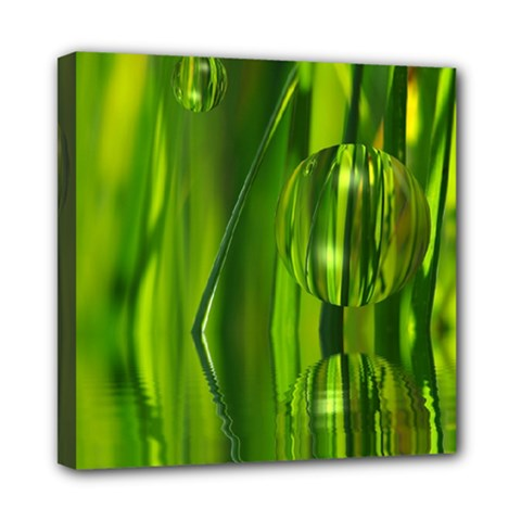 Green Bubbles  Mini Canvas 8  X 8  (framed) by Siebenhuehner
