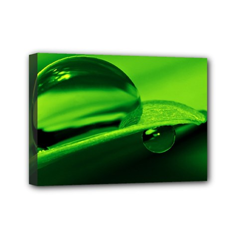 Green Drop Mini Canvas 7  X 5  (framed)