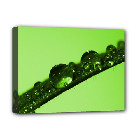 Green Drops Deluxe Canvas 16  X 12  (framed)  by Siebenhuehner
